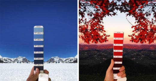 25 Imágenes que demuestran que todo tiene un color 'Pantone'
