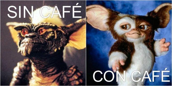 memes de café 1