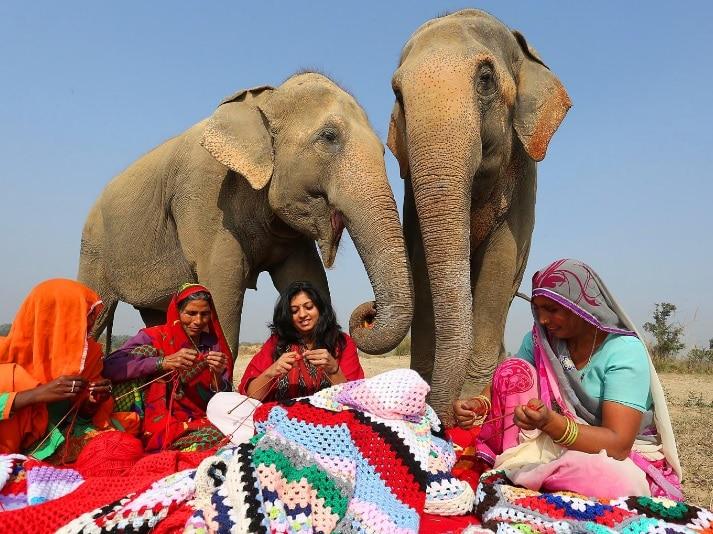 mujeres tejiendo pijamas para elefantes
