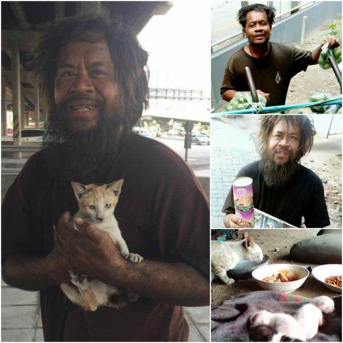 indigente que alimenta gatos callejeros