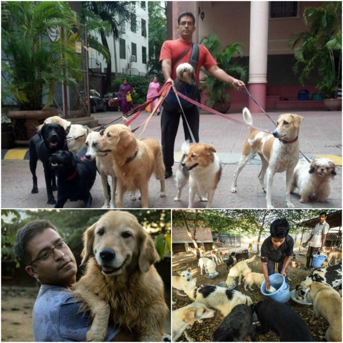 ingeniero en software que rescata perros