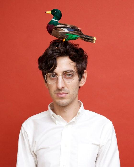 minesota prohibido traer aves en la cabeza