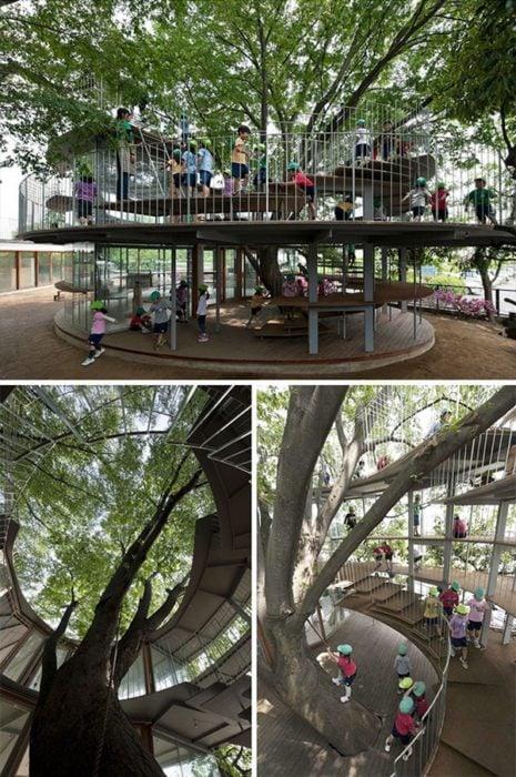playground aroun tree