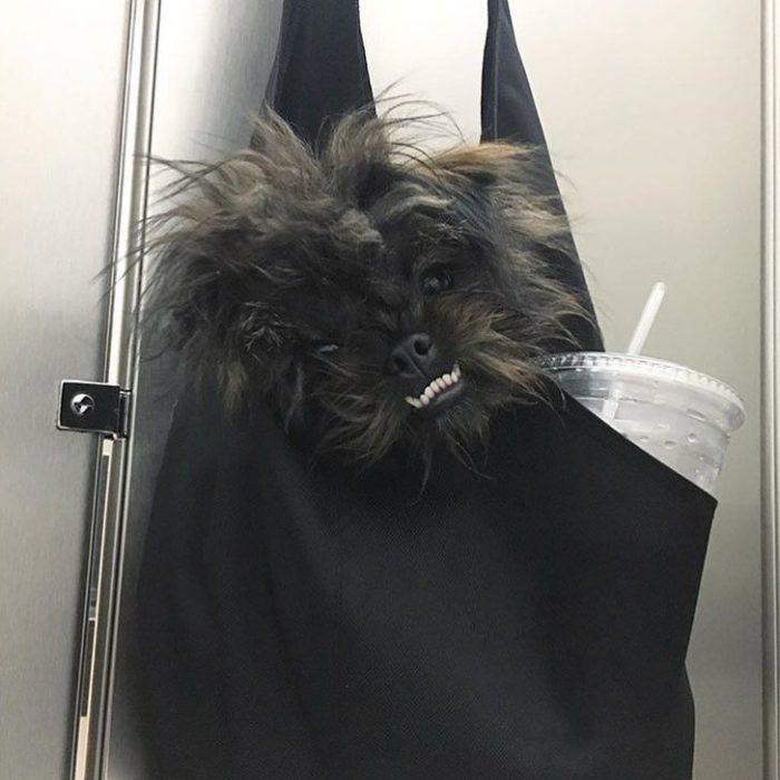 perro feo bolsa