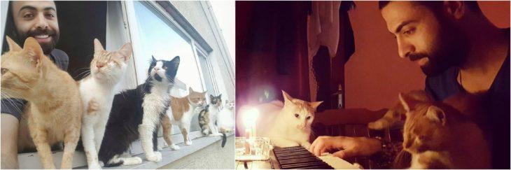 pianista rescata gatos