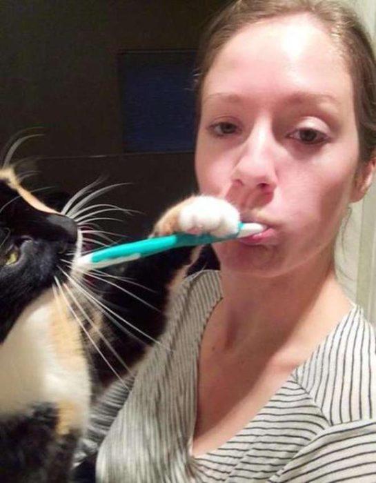 Animales que no conocen el espacio personal