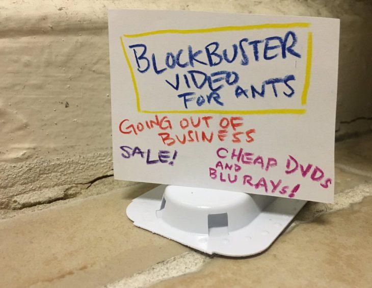 Carteles para que hormigas entren en una trampa