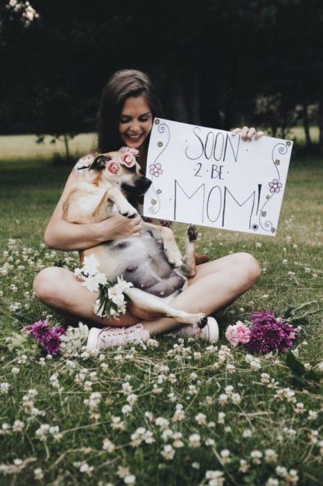 Perrita embarazada en una sesión de fotos