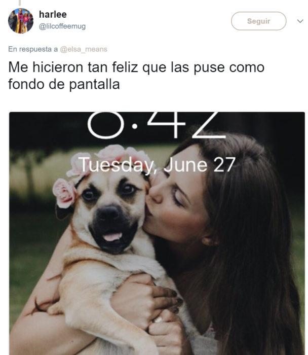 Comentarios en twitter sobre una perrita que tuvo una sesión de maternidad