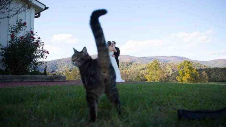 foto boda arruinada 10