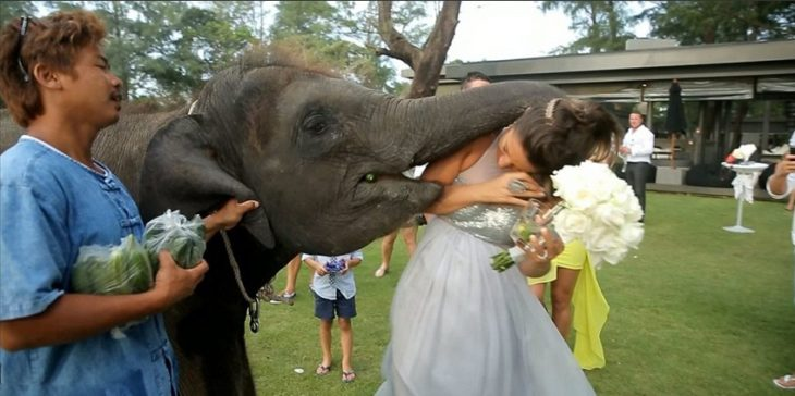 foto boda arruinada 2