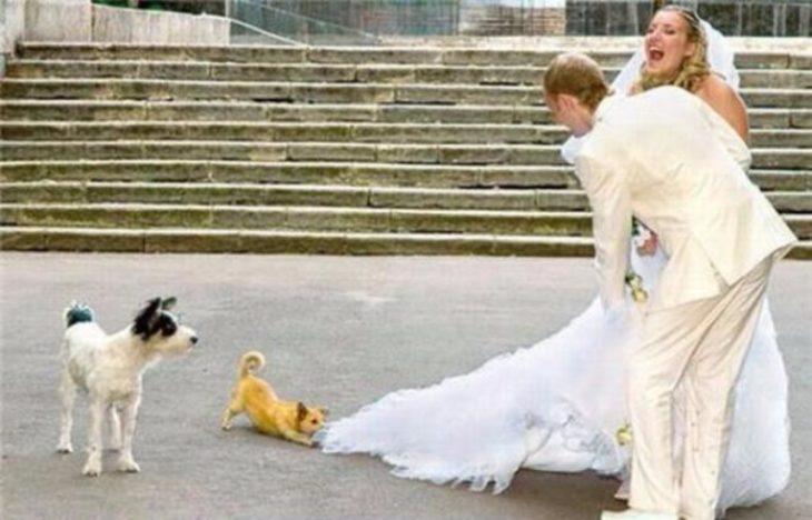 foto boda arruinada 4
