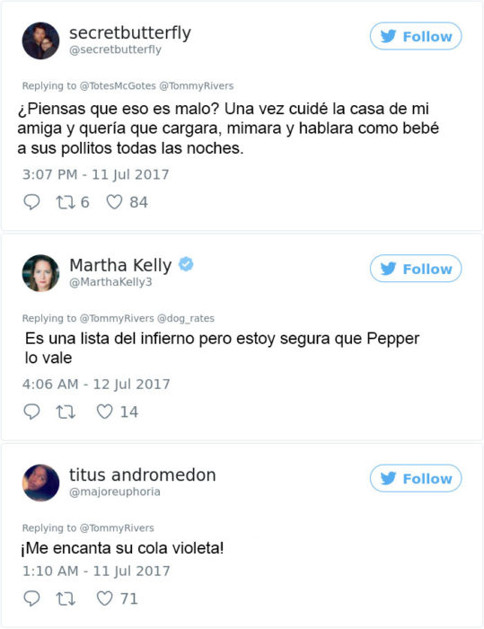 comentarios pepper 2