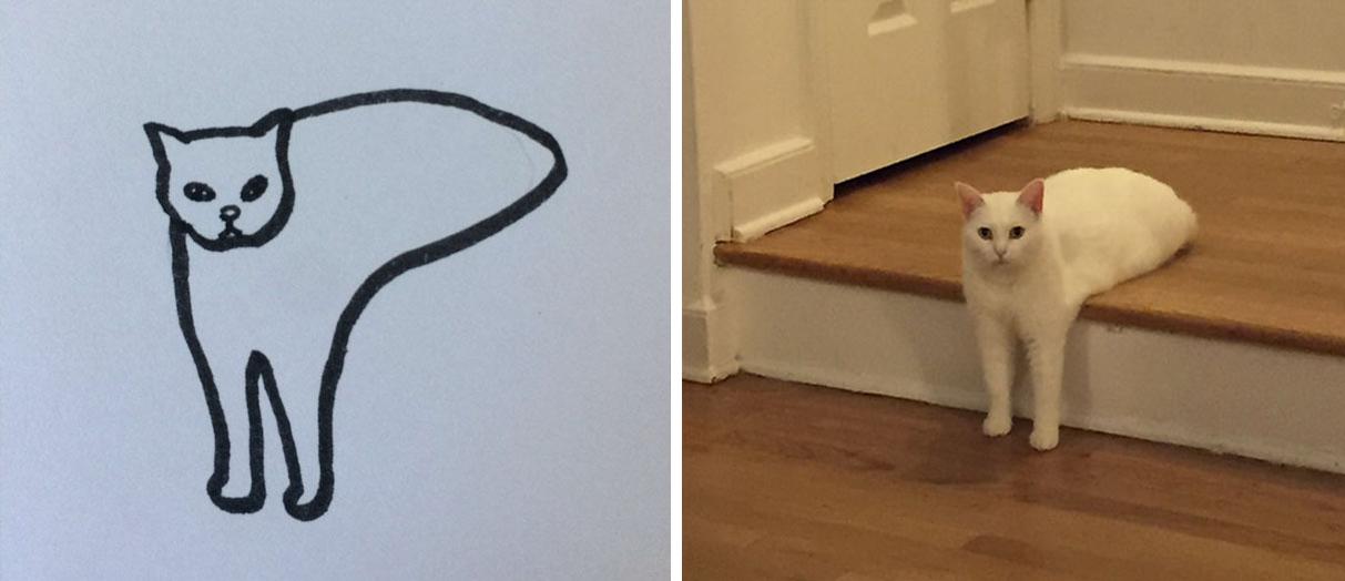 Cuando Tu Profesor Sigue Diciendo Que No Sabes Dibujar Gatos