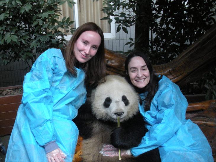 niñeras de pandas