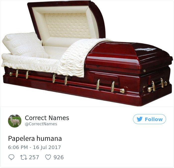 papelera humana