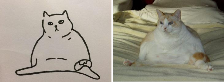 dibujo gato