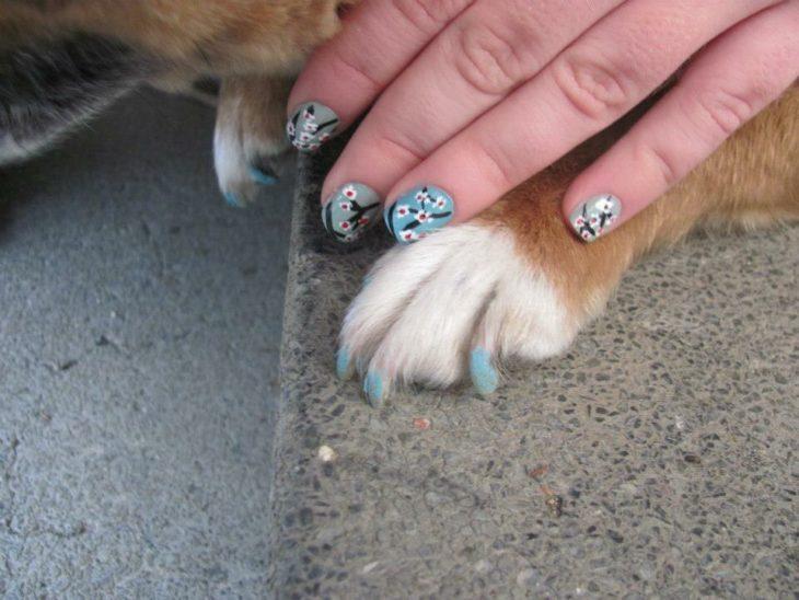 garras de perro y manos de mujer