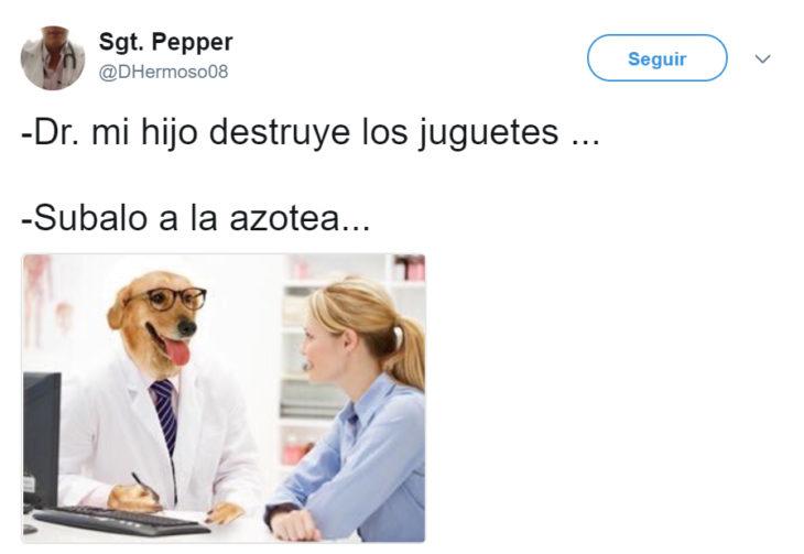 Meme del doctor perro