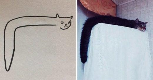 Estos gatos son tan parecidos a la realidad que no dejaras de reír