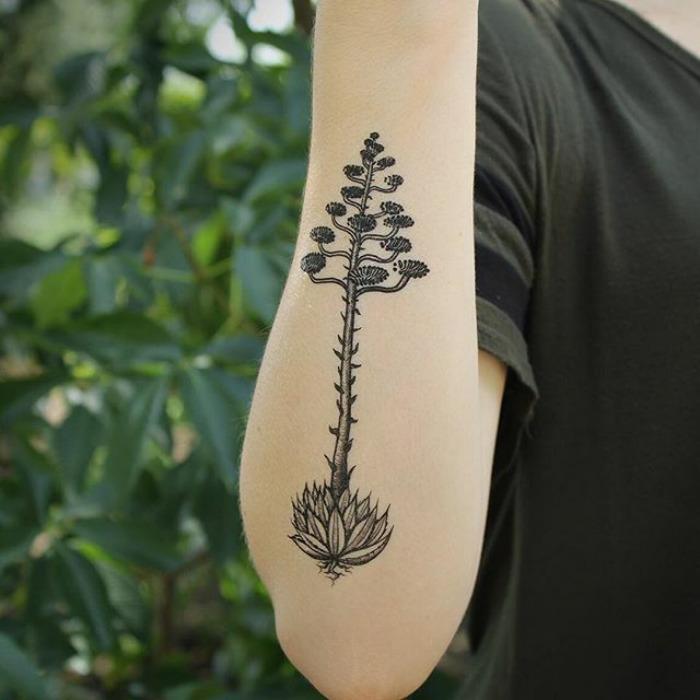 tatuajes suculentas 4