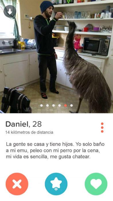 tengo un emu