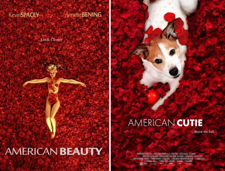 Poster de American Beauty con un perro como protagonista