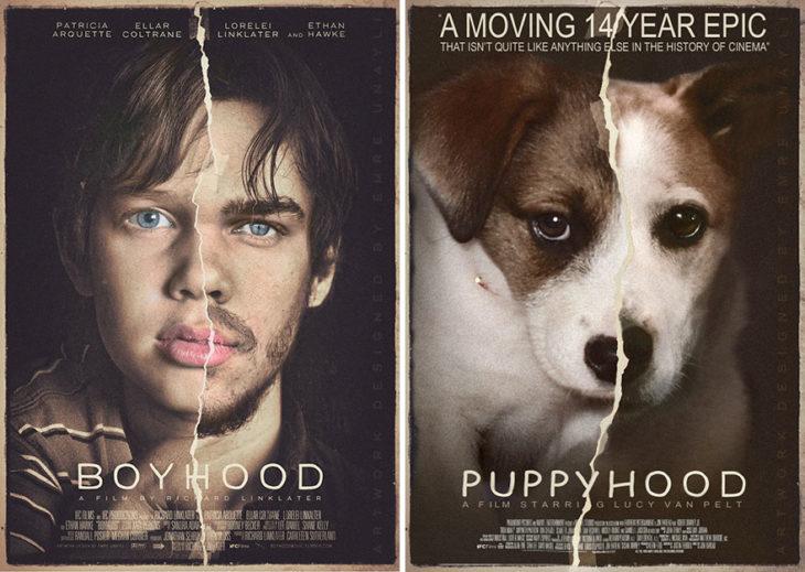 Boyhood póster con perro como protagonista