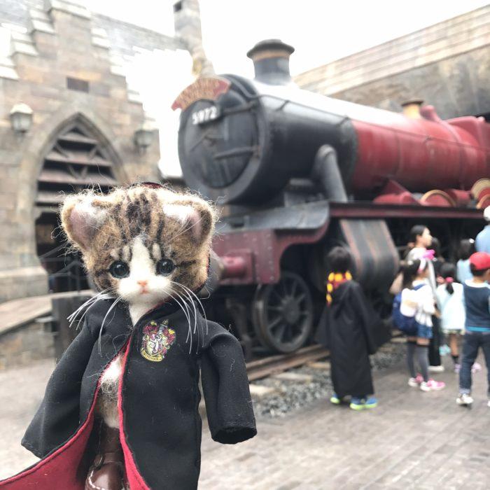 Gato de lana vestido con uniforme de Howarts
