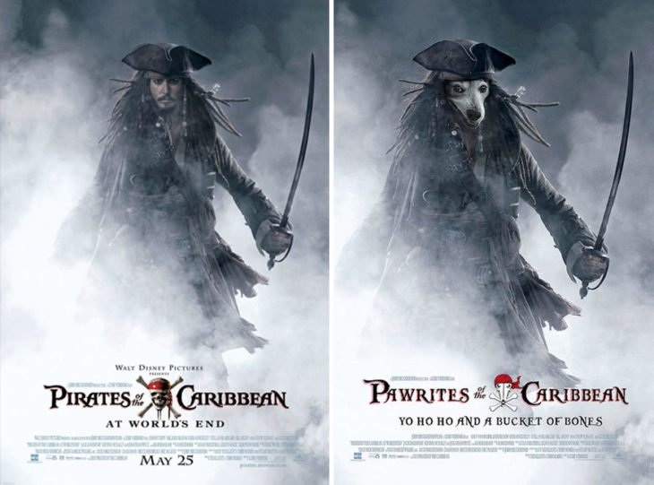 pirates of the caribbean póster con perro como protagonista