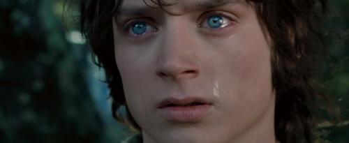 frodo llorando