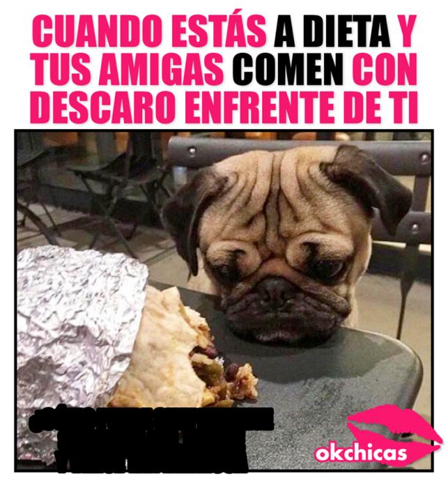 cuando tu estas a dieta pero tus amigas no