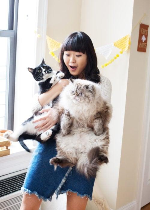 Asiatica con dos gatos uno negro y otro gordo y peludo
