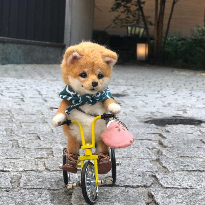 Shiba de lana en bicicleta