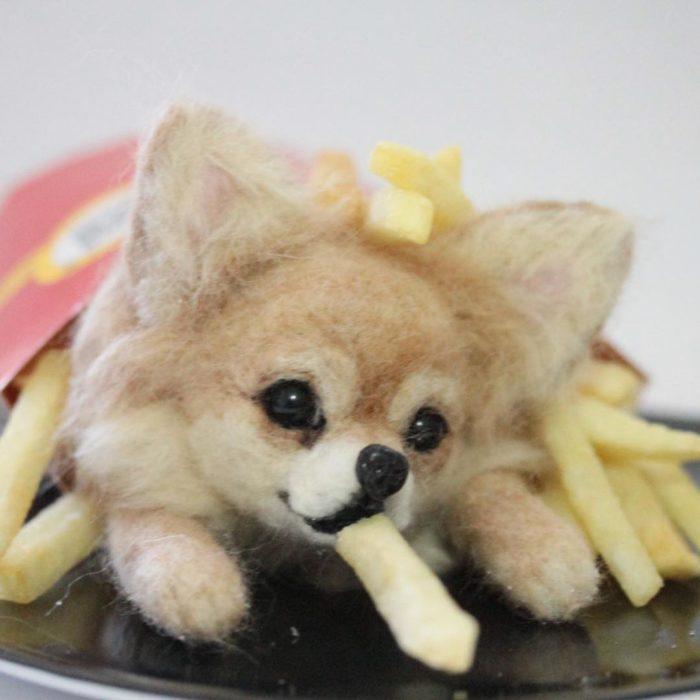 Pomeranian de lana con papas fritas