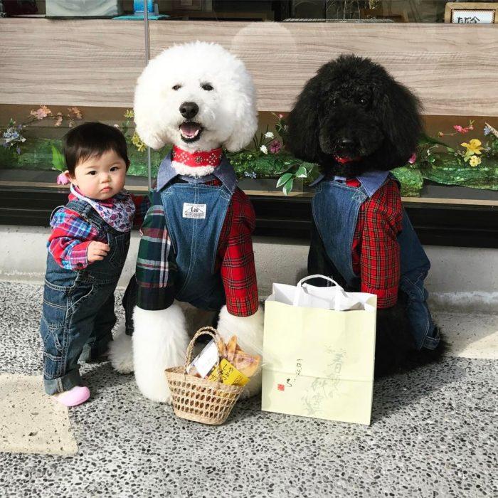Mame y Riku y Qoo van de compras