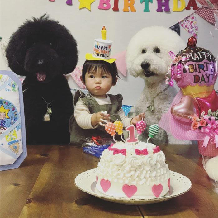 Riku y Qoo en el cumpleaños de Mame