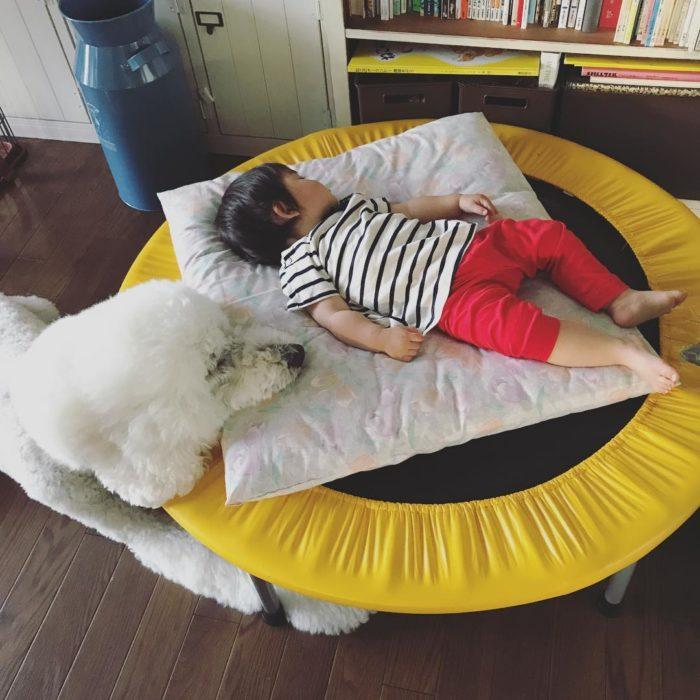 Riku y Mame dormidos en el trampolin