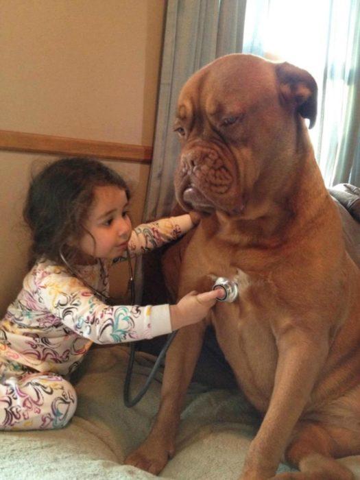 perro sentado y niña escuchando su latido
