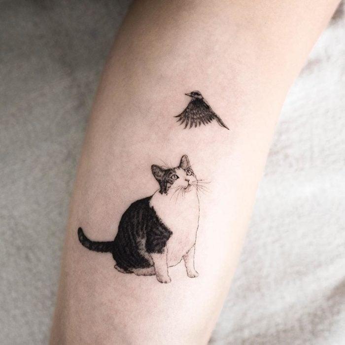 Tatuaje de gato con ave