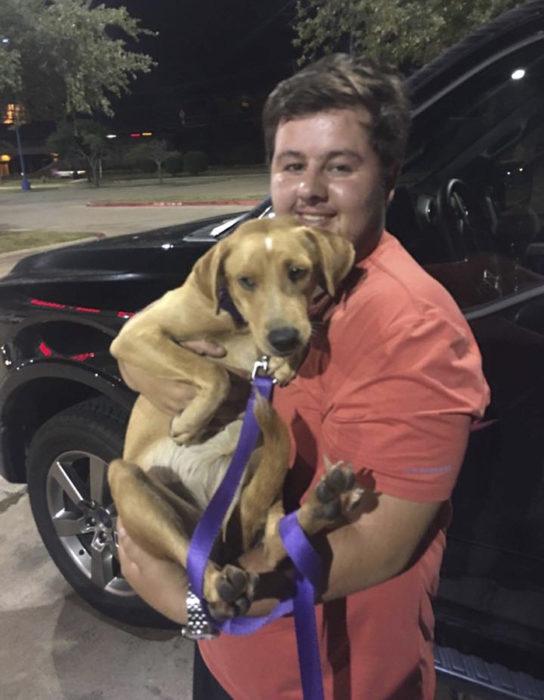 chico cargando un perro