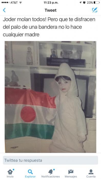 disfraz de palo de bandera