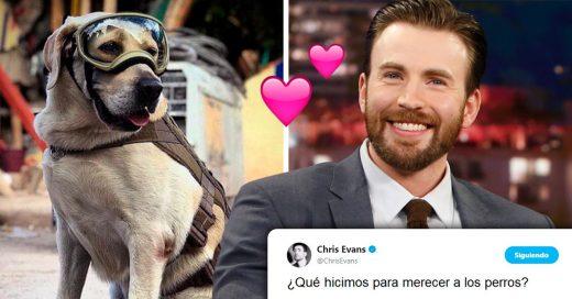 Chris Evans demuestra su admiración por Frida, la perrita rescatista de México