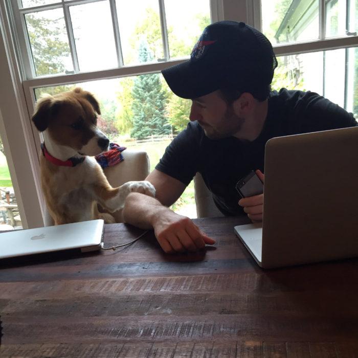 Famosos con sus perros; Chris Evans