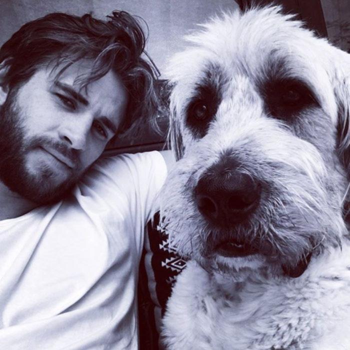 Famosos con sus perros; Liam Hemsworth