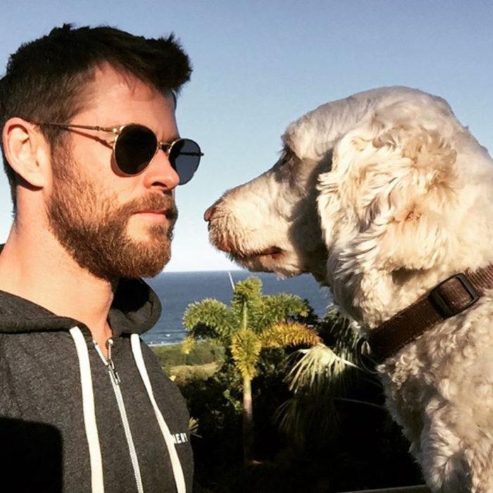 Famosos con sus perros; Chris Hemsworth
