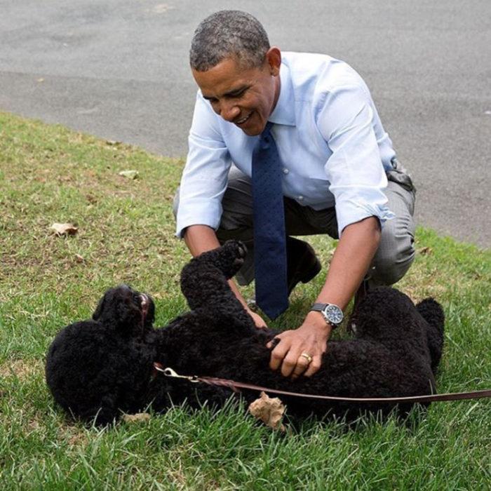 Famosos con sus perros; Barack Obama