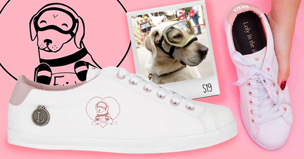 Marca de zapatos mexicana diseña tenis en honor a Frida, la perra rescatista