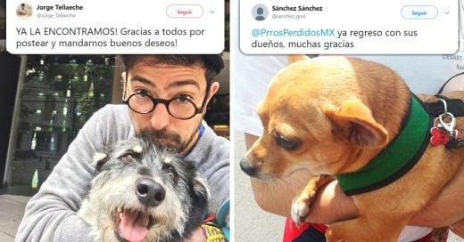 Las mascotas se están reencontrando con sus dueños tras el sismo en México; Internet se desborda de alegría