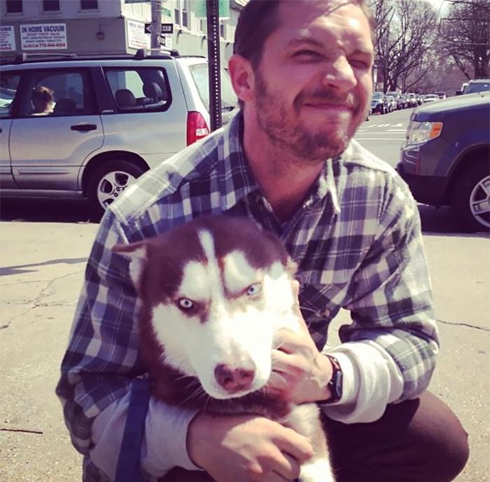 chico con un perro husky